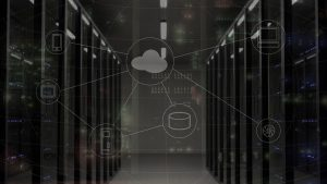 network web server