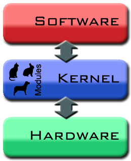 Difference Between Kernel and OS